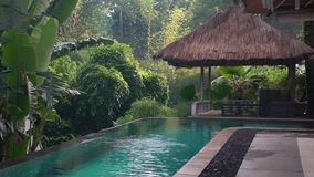 Outdoor original pool with thatched porches, outside area with pool, spa hotel stock video footage