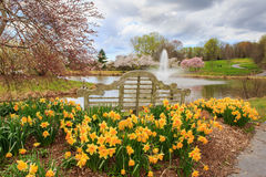 Outdoor Park Bench Spring Garden Virginia Royalty Free Stock Photos