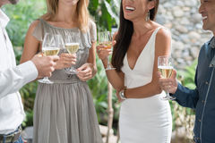Outdoor party Stock Photography