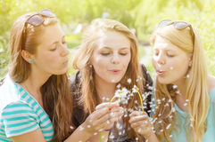 Outdoor photo of beautiful charming three girls in stock images