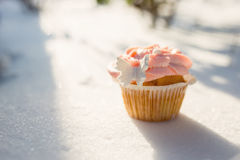 Outdoor photo of cupcake decorated with a sugar butterfly. Cupca Stock Photos