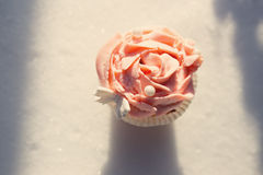 Outdoor photo of cupcake decorated with a sugar butterfly. Cupca Royalty Free Stock Photography