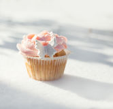 Outdoor photo of cupcake decorated with a sugar butterfly. Cupca Stock Images