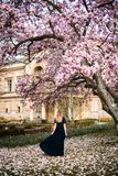 Outdoor photo of young woman standing posing under magnolia tree in full bloom in front of a castle royalty free stock images