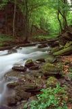 Outdoor photography. In Transylvanian Alps, Romania Royalty Free Stock Photography
