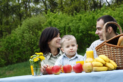 Outdoor picnic Royalty Free Stock Photos