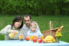 Outdoor picnic Royalty Free Stock Photography