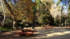 Outdoor Picnic Area royalty free stock image