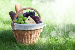 Outdoor picnic basket on green lawn Stock Images