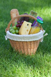 Outdoor picnic basket on green lawn Stock Photography