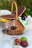 Outdoor picnic setting with red wine Stock Images