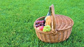 Outdoor picnic at sunny day. Picnic basket with bottle of red wine, baguette, white and black grapes and apples.Wicker picnic basket with white and black grapes royalty free stock photos