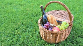 Wicker picnic basket with white and black grapes and wine on green grass outside in summer park, no people stock image