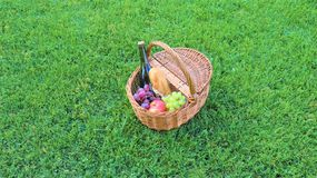 Outdoor picnic at sunny day. Picnic basket with bottle of red wine, baguette, white and black grapes and apples.Wicker picnic basket with white and black grapes royalty free stock photography