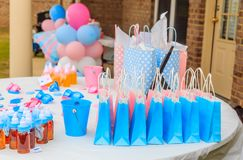 Outdoor Pink and Blue Gender Reveal Party Decoration royalty free stock photo