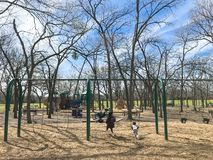 Outdoor playground with children playing wintertime in North Texas, America. Kids running at colorful playground during wintertime in Lewisville, Texas, USA royalty free stock photos