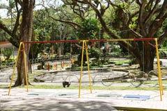 Swing Set. Outdoor playground swing set in Nova Scotia stock image