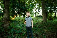 Outdoor portrait of adorable toddler boy in autumn park, having royalty free stock photos