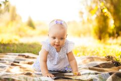 Outdoor portrait of a baby on all fours. crawling on knees child. On the grass in a summer park, set Royalty Free Stock Image