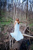 Outdoor portrait of a beautiful brunette model in blue dress in the spring forest.  Stock Photos