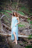 Outdoor portrait of a beautiful brunette model in blue dress in the spring forest.  Stock Photography