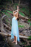 Outdoor portrait of a beautiful brunette model in blue dress in the spring forest.  Stock Image