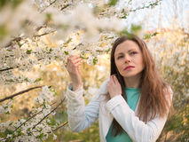 Outdoor portrait of a beautiful woman in white jacket among white blossom tree Royalty Free Stock Photography