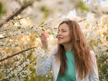 Outdoor portrait of a beautiful woman in white jacket among white blossom tree Stock Photography