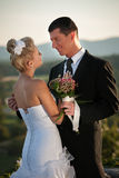 Outdoor portrait of bride and groom on wedding day Stock Images
