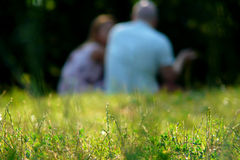 Outdoor Portrait of a couple in summer. Couple sitting outdoors with back to camera. Relaxing on Green Grass.Park Stock Photo