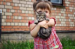 Outdoor portrait of a cute little girl with small kitten, girl playing with cat on natural background Royalty Free Stock Photos