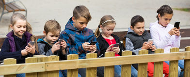 Outdoor portrait of girls and boys playing with phones royalty free stock photography