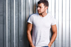 Outdoor portrait of a handsome young man in jeans and gray t-shirt. Stock Photography