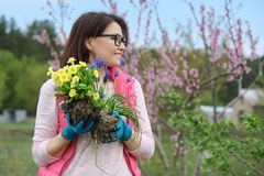Outdoor portrait of smiling middle-aged woman in garden gloves with flowers for planting, spring flowering garden background, copy. Space stock photos
