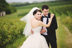 Outdoor portrait of  wedding couple Stock Photos