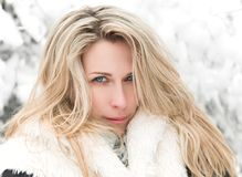 Beautiful long hair blonde woman portrait, winter, snow covered trees background stock images