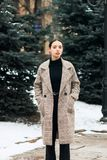 Outdoor portrait of young beautiful brunett girl in grey coat. Model posing in winter city park, holidays concept stock photo