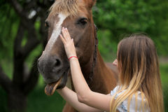 Outdoor portrait of young beautiful woman with horse.  Royalty Free Stock Photography