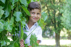 Outdoor portrait of young child boy Royalty Free Stock Image