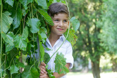 Outdoor portrait of young child boy Royalty Free Stock Photos