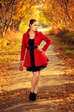 Outdoor portrait of young redheaded woman in autumn forest. Wearing red coat and black belt royalty free stock image