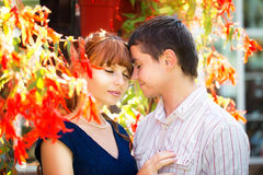 Outdoor portrait of young sensual couple. Love and kiss. Summer Stock Image