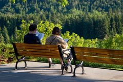 Outdoor Reading Stock Photography