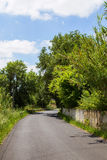 Outdoor road with plants and fance Royalty Free Stock Photos