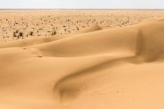 Outdoor sand pattern dune oman old desert rub al khali Royalty Free Stock Image