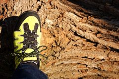 Outdoor Shoes Royalty Free Stock Photo
