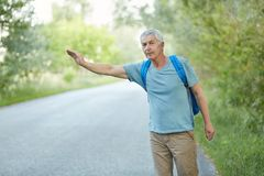Outdoor shot of grey haired senior man in casual t shirt, has vacation trip, hitchhikes on road in countryside, has rucksack on ba. Ck. Travelling, tourism and stock images