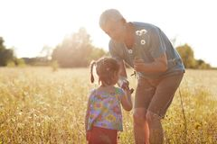 Outdoor shot of small girl and her grandfather have fun together, walk in countryside on green grass, enjoy camomiles, sunny day, stock images