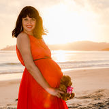 Outdoor shot of young pregnant woman in red dress Royalty Free Stock Photos