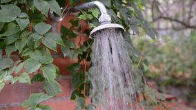 Outdoor Shower with Leaves stock video footage